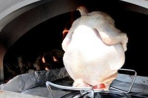 Pollo – una carne eccellente